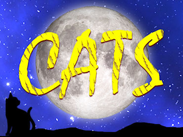 CATS Cast Results