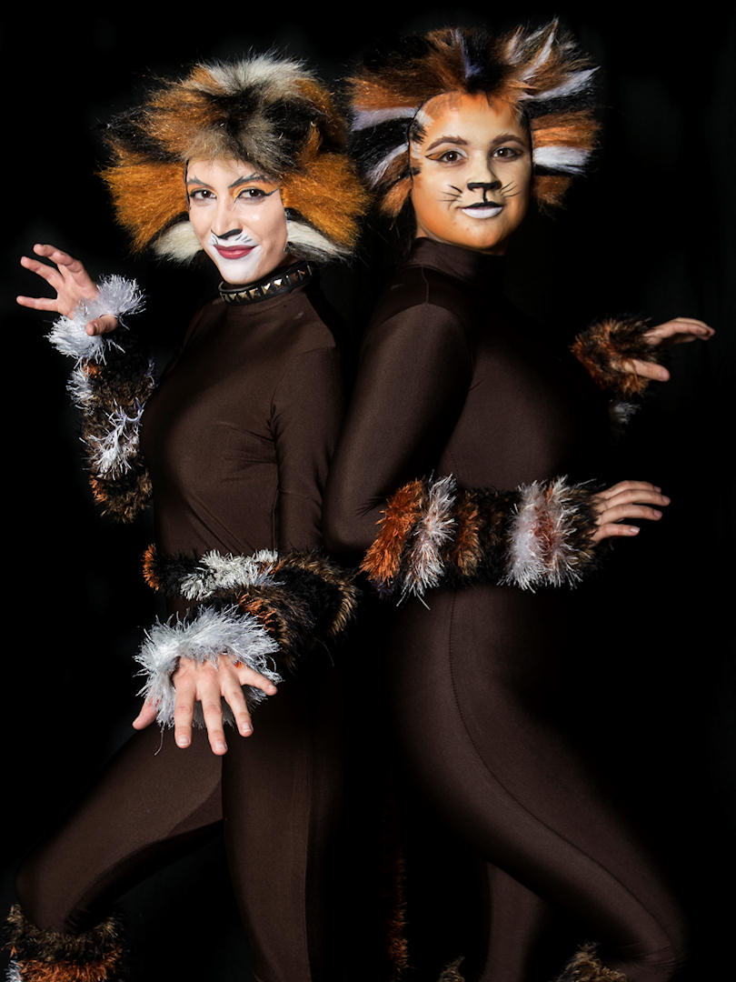 Cats Costumes For Sale Redditch Operatic Society